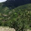 Sierra De Majalca