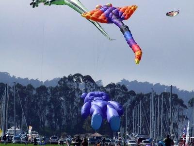 Marina  Gree  Kite  Festival