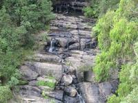 Kinglake National Park