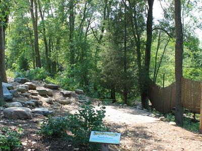 Matthaei  Botanical  Gardens  Amphitheater