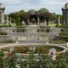 Memorial Rose Garden Pond