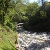 Minnehaha Falls View Downstream