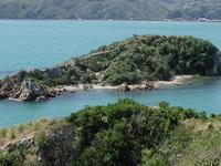 Mokopuna Isla