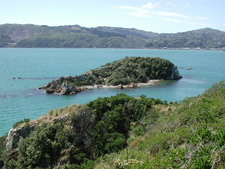Mokopuna Island North Of Matiu Somes Island