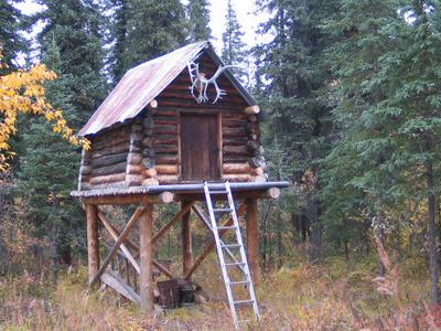 Moose  Creek  Shelter  Cabin Cache