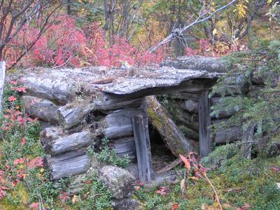 Moose  Creek  Shelter  Cabin Dog Houses