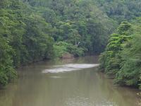 Mopan Rio