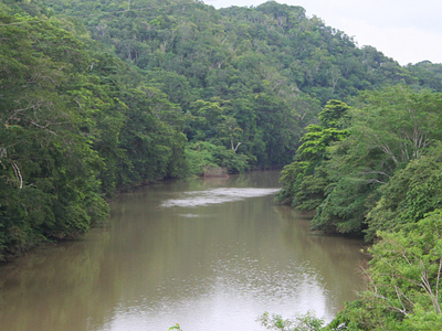 Mopan River At San Ignacio