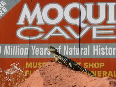 Moqui Cave Signpost