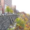 Columbia University Buildings
