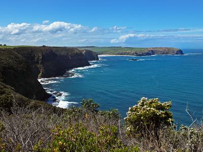 Mornington  Peninsula  Cape  Shank