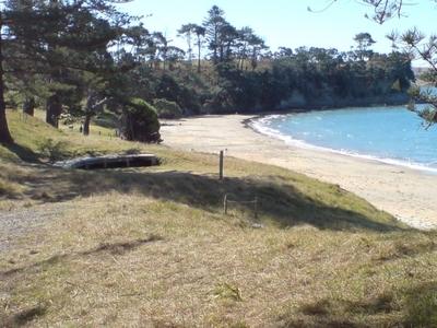 Motuihe Island Northern Beach