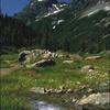 Mount Baker Snoqualmie National Forest