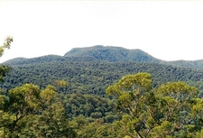 Mount Banda Banda Photographed From Camerons Bluff