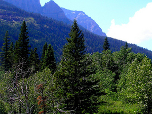 Monte Blakiston