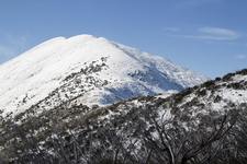 Mount Feathertop From Summit Track