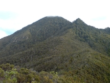 Mount Hobson Top In The Clouds