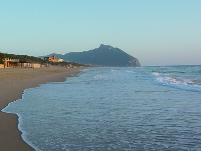 Mount Circeo From Beach Of Dunes In Sabaudia