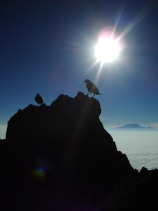 View From Mount Meru Towards Mount Kilimanjaro
