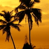 Sunset At Bandra Bandstand