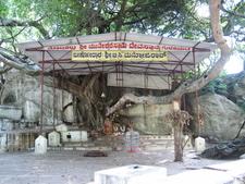 Muneeshwara Swamy Shrine Near TK Falls