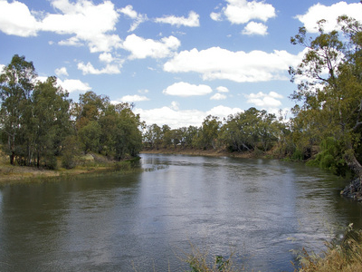 Murrumbidgee River At Wagga Wagga
