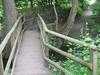 Footbridge Over Meanwood Beck