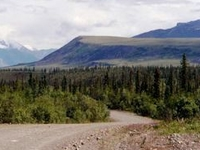 Nabesna carretera