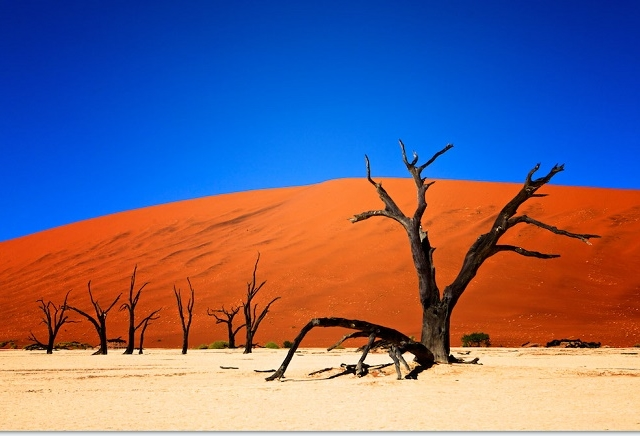 6 Days Namibia Package Photos