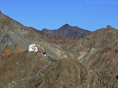 Namgyal Landscape - Ladakh