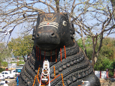 Nandi, Shiva's Vehicle, On Chamundi Hills
