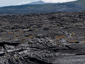 Napau Cráter Trail