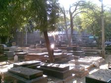Gravestones Of Various Dead