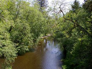Naselle Río
