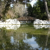 Ponds In Athens National Garden