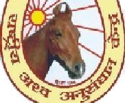 National Research Centre on Equines