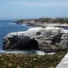 Natural Rock Formations At Natural Bridges State Beach