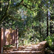 Nature Trail - Prairie Creek Visitor Centre