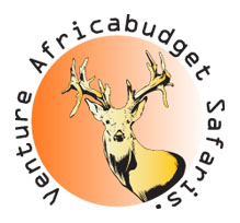 Nenture Africa Budget Safaris