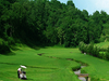 Nepal Golfing - Gokarna Forest Golf Course