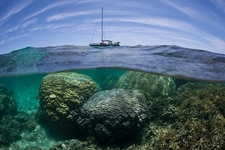 New Caledonia Shallow Reef FR