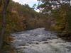 Newfound River