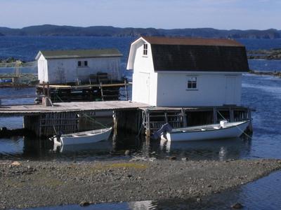 Newfoundland Twillinggate