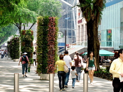 New  Orchard  Road  Flower  Zone