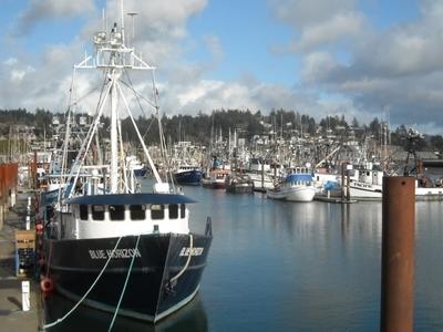 Newport Harbor
