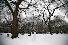 New York City Manhattan - East Village Tompkins Square Park