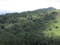 Ngong Hills