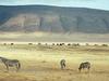 Heart of Kenya and Tanzania 9 Days