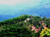 Nibbinda Forest Monastery