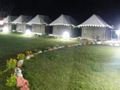 Night Camp View